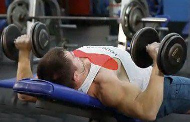 用哑铃怎么练<a href=http://www.muscles.com.cn/xiongbu/ target=_blank class=infotextkey>胸肌</a>